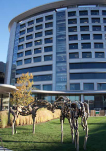 Picture of the Children's Hospital